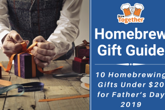 10 Homebrewing Gifts Under $20 for Father's Day 2019