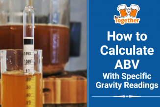 How to Calculate ABV with Specific Gravity Readings