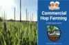 Commercial Hop Farming with Darbro Farms