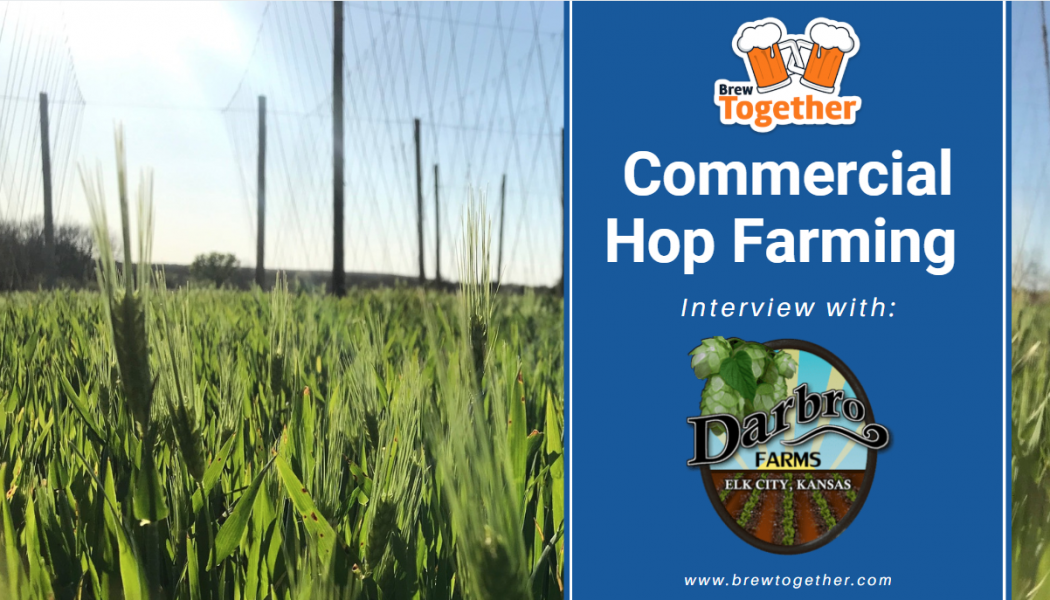 Commercial Hop Farming with Darbro Farms