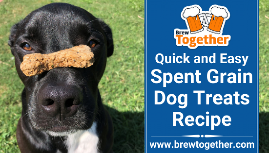 Quick and Easy Spent Grain Dog Treats Recipe