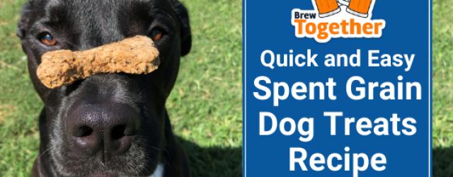 Quick and Easy Spent Grain Dog Treats Recipe